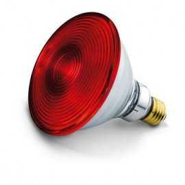 BEURER Zamjenska žarulja 150W za IL21 i IL35