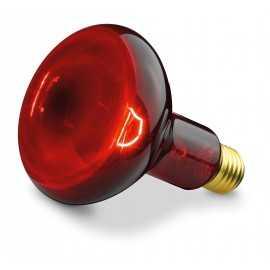 BEURER Zamjenska žarulja 100W za IL11